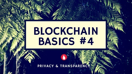 Transparency and Privacy features give power to Blockchain