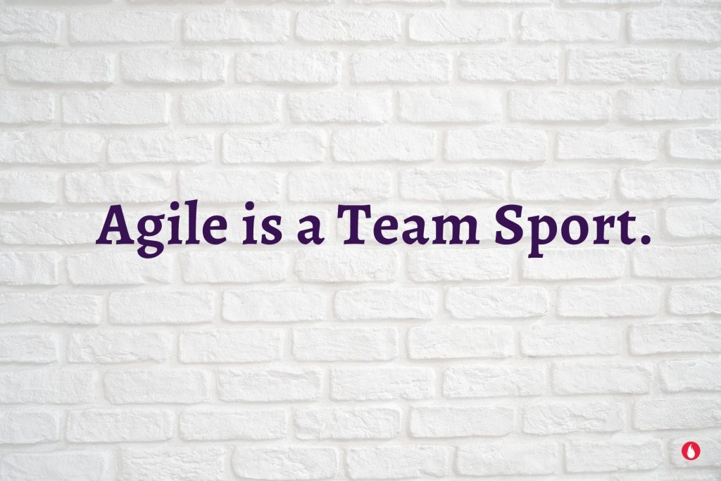 Agile OWL quotes