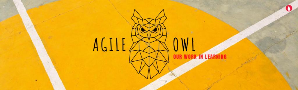 Agile OWL