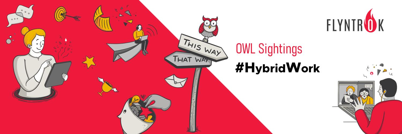 OWL Sightings on Hybrid Work