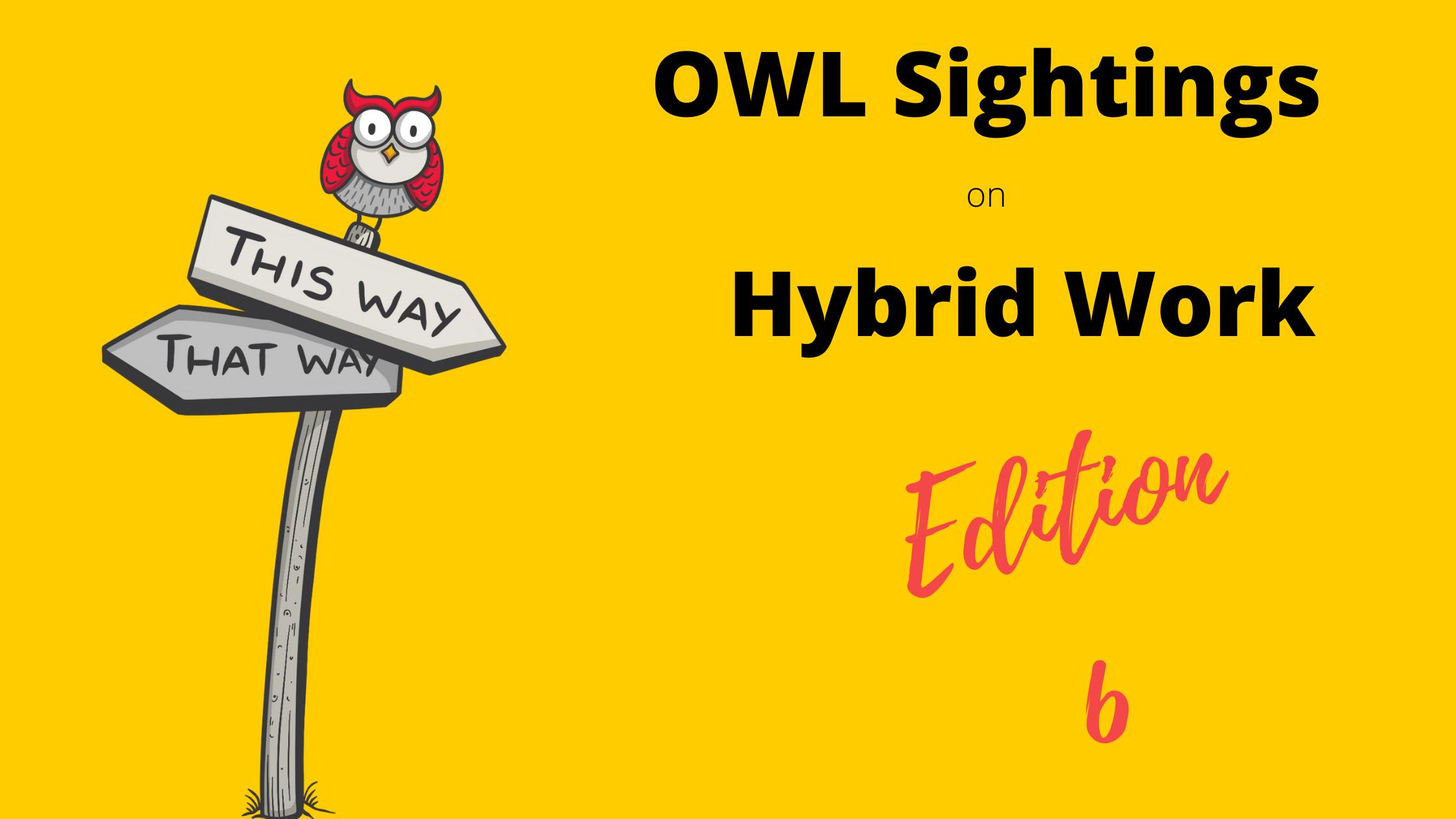 OWLSightings_HybridWork_Edition6